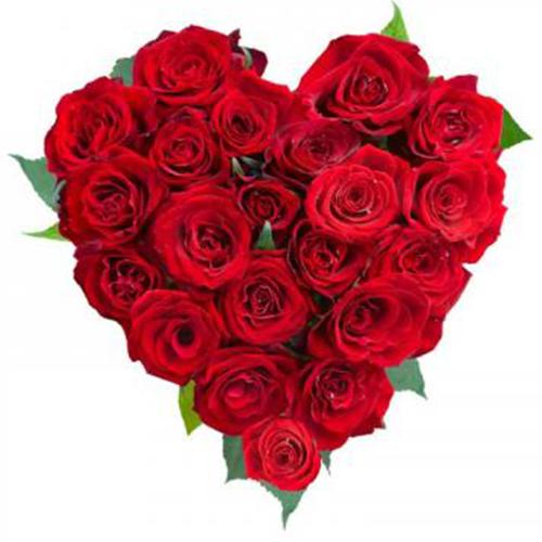 cuore di rose rosse
